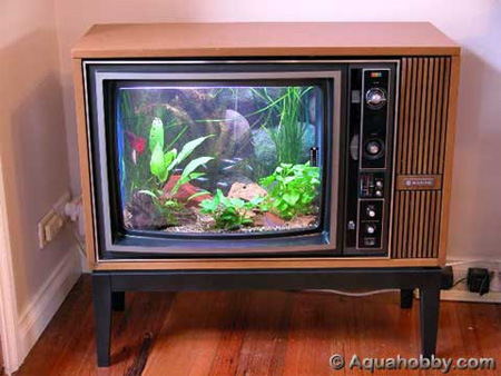 Old TV Aquarium